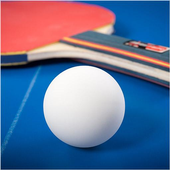 Ping Pong Table Tennis Pro icon