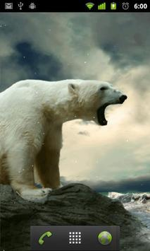 polar bear wallpaper live apk screenshot