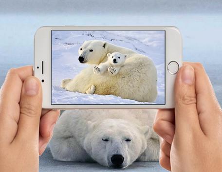 Polar Bear Photo Frames screenshot 2