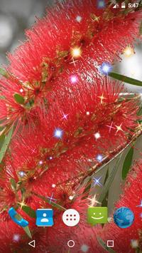 Bottlebrush Live Wallpaper screenshot 3