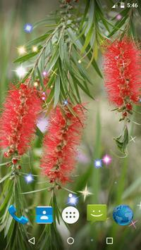 Bottlebrush Live Wallpaper screenshot 2