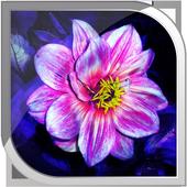 Magic Flowers Live Wallpaper icon