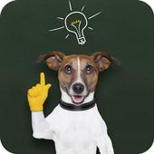 강아지퀴즈 biểu tượng
