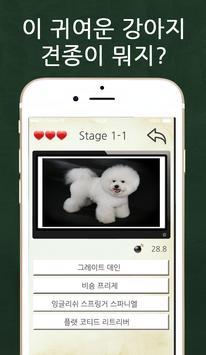 강아지퀴즈 ảnh chụp màn hình 2
