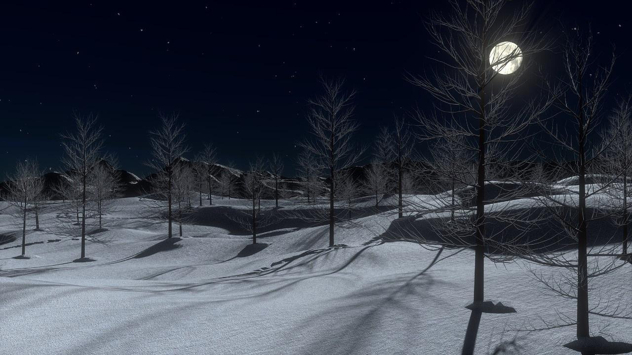 Image result for winter night