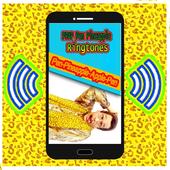 Pen Pineapple Ringtones PPAP icon
