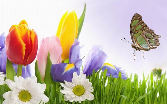 Spring flower wallpaper apk spring flower wallpaper apk mightylinksfo