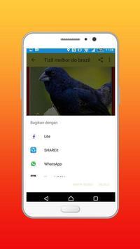 Canto Fêmea De Tiziu Offline apk screenshot