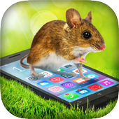 Mouse In Phone Prank icon