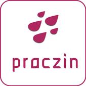 Praczin - Your health care partner icon