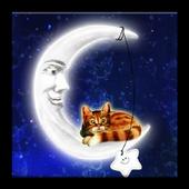 Cat on Moon icon