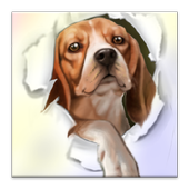Silly Dog Live Wallpaper icon
