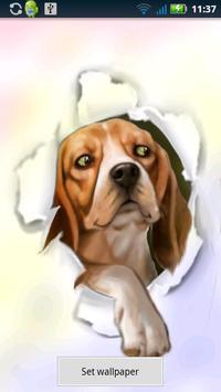 Silly Dog Live Wallpaper apk screenshot