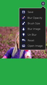 Blur Image screenshot 3