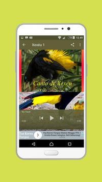 Canto de Xexéu Mp3 screenshot 3