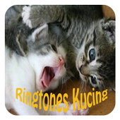 Ringtones Suara Kucing icon