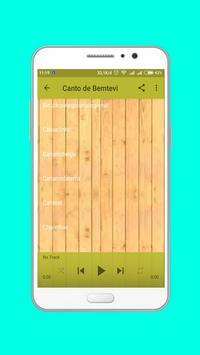 Canto de Bemtevi Offline screenshot 1