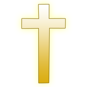 NIV Holy Bible icon