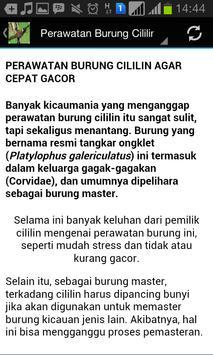 Master Cililin Gacor screenshot 4