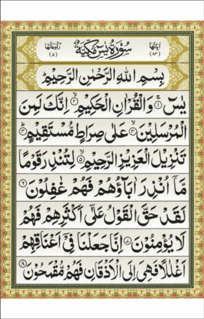 Surat Yasin Pro For Android Apk Download