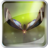 Amazing Butterfly icon