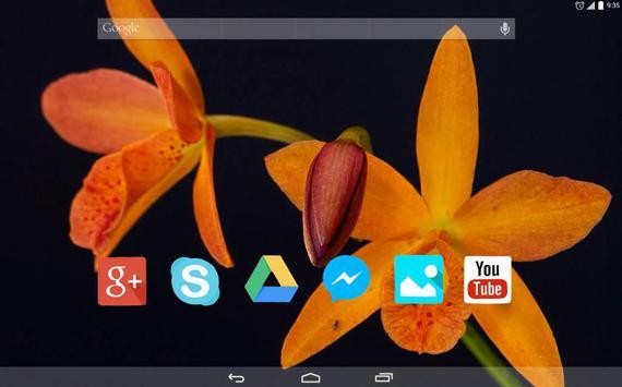 Flowers Bloom apk screenshot