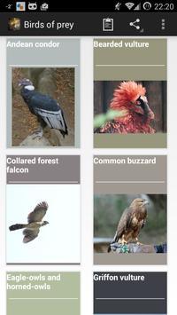 Birds of prey screenshot 3