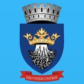 Brasov City Council icon
