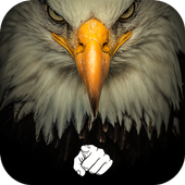 AppLock Theme Eagle icon