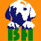 Bauadvisor icon