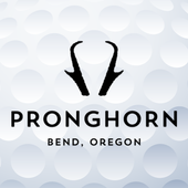 Pronghorn icon
