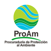 PROAM icon