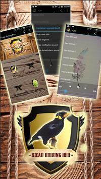 Kicau Burung Beo poster