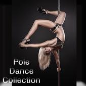 Pole Dance Exercises icon