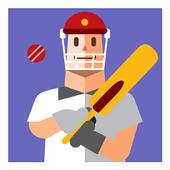 CricZoom Cricket Scores 2017 icon
