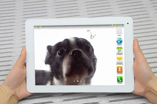 Cute dog licking screen screenshot 2