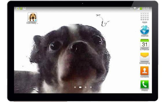 Cute dog licking screen screenshot 3