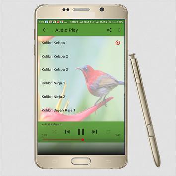 Suara Kolibri Sepah Raja Masteran screenshot 3