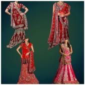 Indian Marriage Saree Photo icon