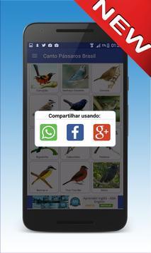 Canto De Quero Quero screenshot 5