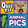 QuizTix: Animal Pics Trivia - Nature Image Library