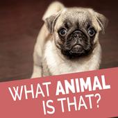 Animal Quiz - Quess The Animal icon