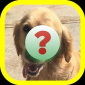 Descubre La Raza De Perro icon