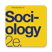 Introduction to Sociology ikon