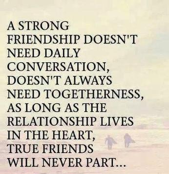 Best Friend Quotes For Android Apk Download