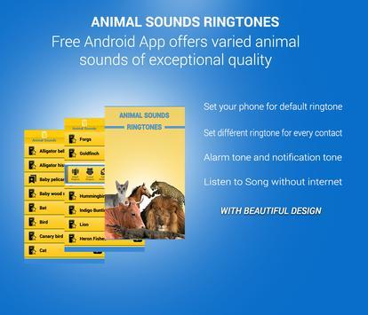 Best Animal Sounds Ringtones poster