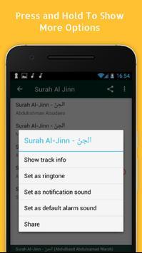 Surah Al Jinn MP3  Full screenshot 3