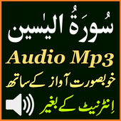 Voice Surat Yaseen Mp3 Audio icon