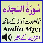 Offline Sura Sajdah Mp3 Audio icon
