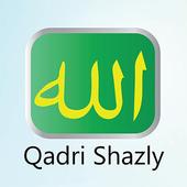 qadrishazly icon